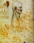 Leonardo Da Vinci - Head Measured, and Horsemen