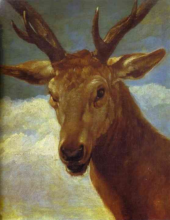 'Head of a Stag', Oil by Diego Velazquez (1599-1660, Spain)