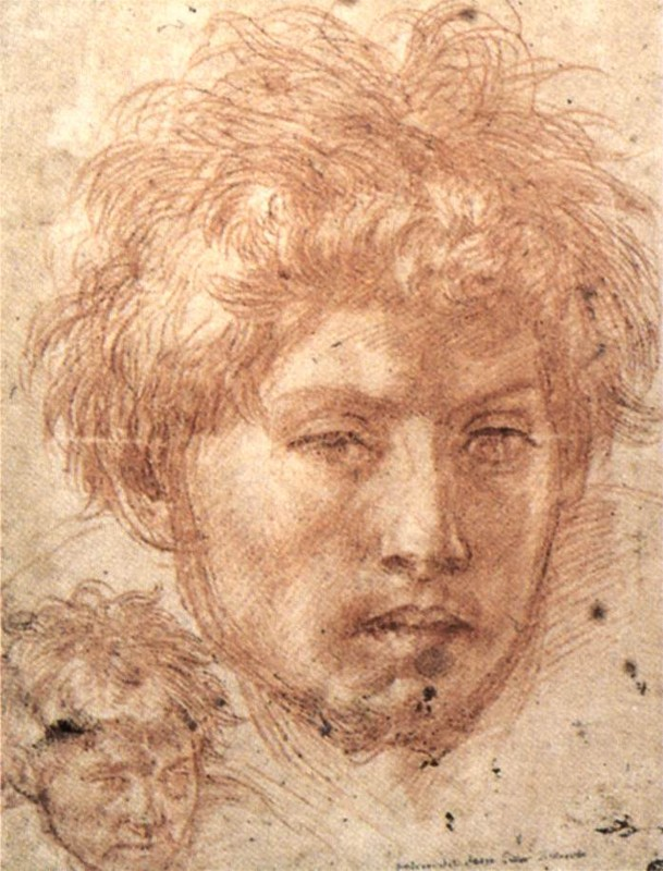 'Head of a Young Man', Oil by Andrea Del Sarto (1486-1530, Italy)