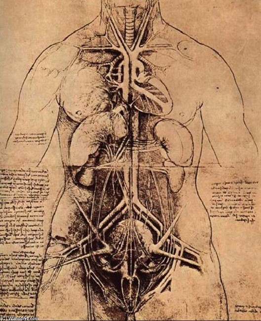 'Dissection of the female body', Ink by Leonardo Da Vinci (1452-1519, Italy)