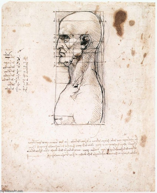 'Male head in profile with proportions', Metalpoint, Ink by Leonardo Da Vinci (1452-1519, Italy)