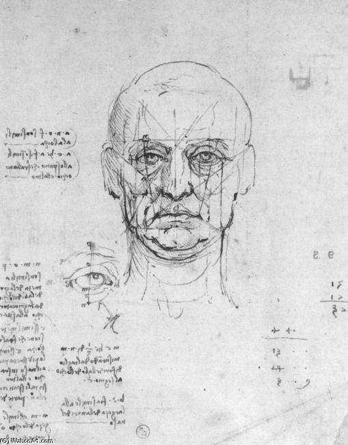'Study on the proportions of head and eyes', Ink by Leonardo Da Vinci (1452-1519, Italy)