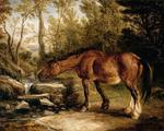 James Ward - A Horse Drinking at a Stream