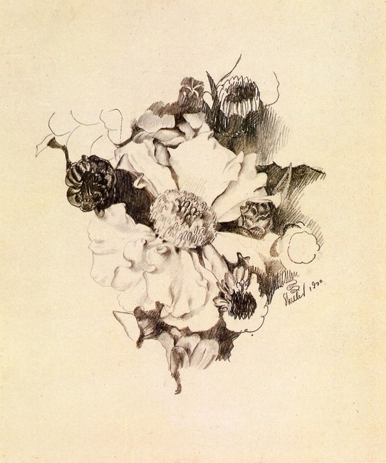 Charles Sheeler Drawings Rose Charles Sheeler