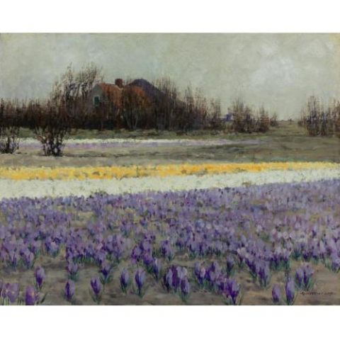 George Hitchcock - A field of crocuses