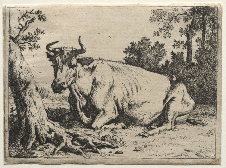 Paulus Potter >> The cow lying down near a tree  |  (, artwork, reproduction, copy, painting).