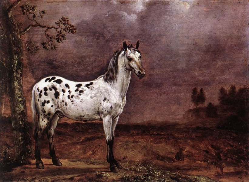 Paulus Potter >> The Spotted Horse  |  (, artwork, reproduction, copy, painting).
