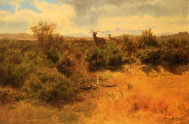 Rosa Bonheur >> Stag and Doe in a Landscape  |  (, artwork, reproduction, copy, painting).