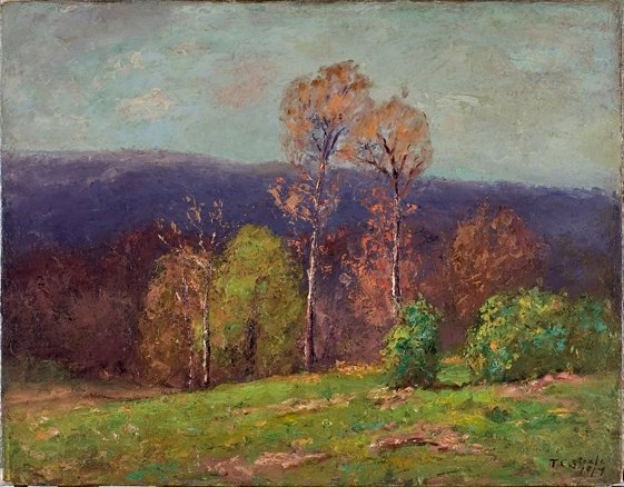 Theodore Clement Steele >> Mountain Ridge in the Distance (Cloud Shadows)  |  (, artwork, reproduction, copy, painting).