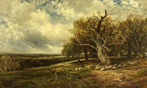 Edmund Morison Wimperis