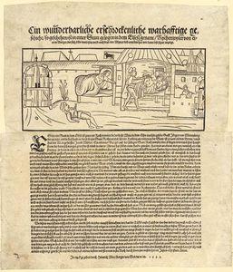 Heinrich Wirrich
