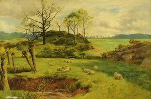 Walker Stuart Lloyd