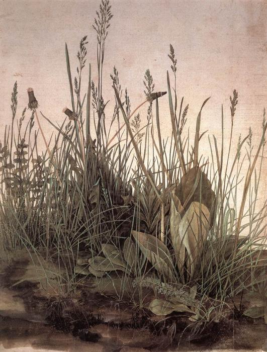 The Large Turf, 1503 by Albrecht Durer (1471-1528, Italy) | Painting Copy | WahooArt.com
