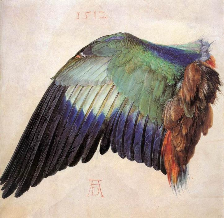 Wing of a Blue Roller, 1512 by Albrecht Durer (1471-1528, Italy) | Famous Paintings Reproductions | WahooArt.com