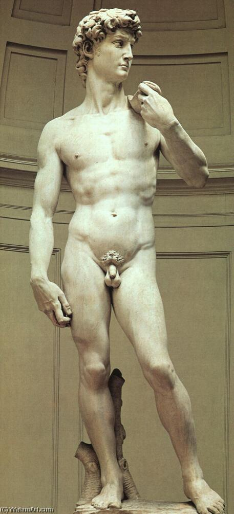 David, Sculpture by Michelangelo Buonarroti (1475-1564, Italy)