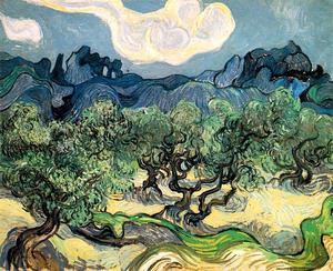 Vincent Van Gogh - Olive Trees with the Alpilles in the Bac