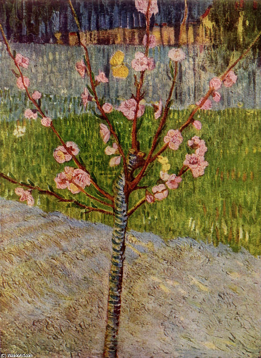 Almond Tree in Blossom, 1888 by Vincent Van Gogh (1853-1890, Netherlands) | Museum Quality Reproductions | WahooArt.com