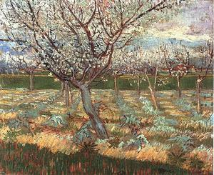 Vincent Van Gogh - Apricot Trees in Blossom 2 - (oil painting reproductions)