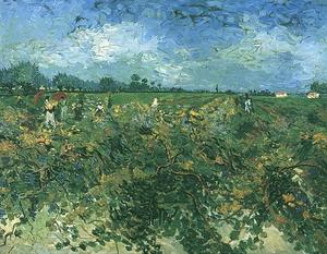 Vincent Van Gogh - Green Vineyard, The