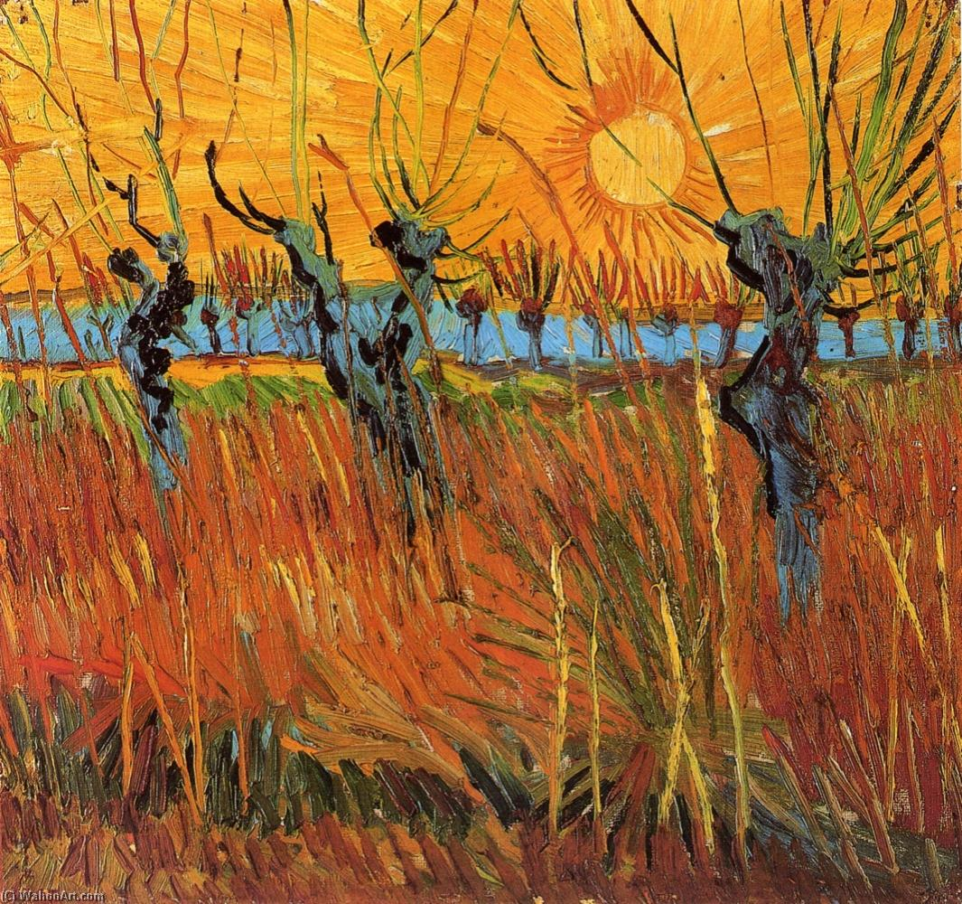Willows at Sunset, Oil On Panel by Vincent Van Gogh (1853-1890, Netherlands)