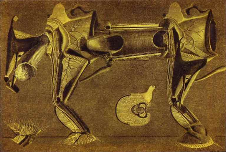 Un peu malade le cheval patte pelu.., Oil by Max Ernst (1891-1976, Germany)