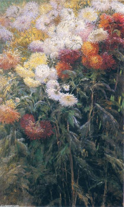 Clump of Chrysanthemums, Garden at Petit Gennevilliers, Oil On Canvas by Gustave Caillebotte  (order Fine Art Poster on canvas Gustave Caillebotte)