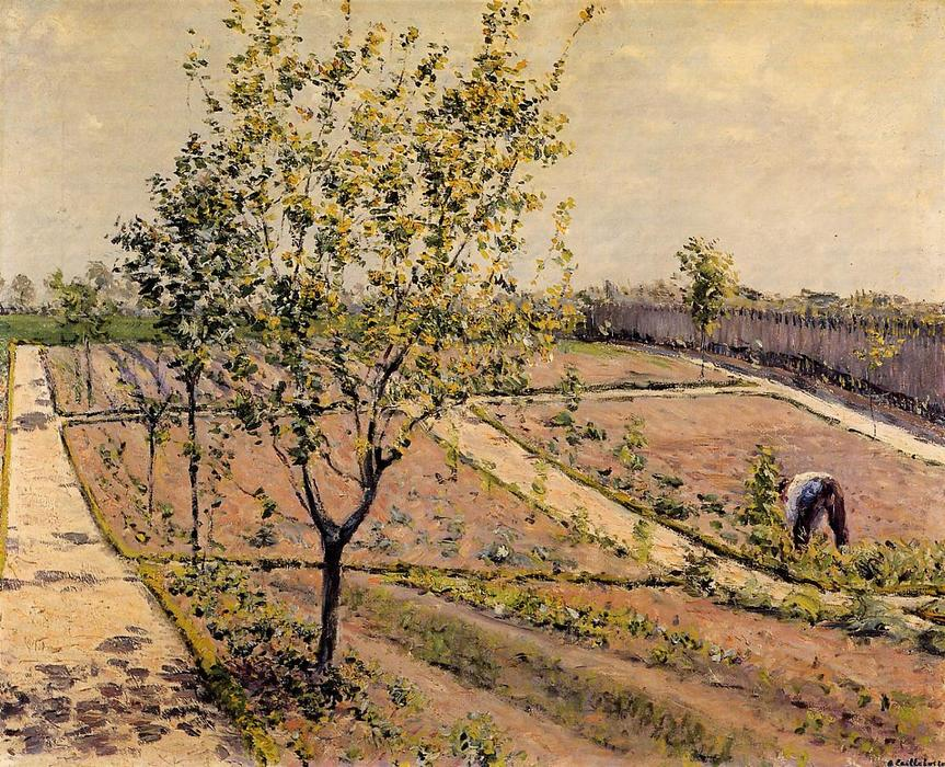 Kitchen Garden, Petit Gennevilliers, Oil On Canvas by Gustave Caillebotte (1848-1894, France)