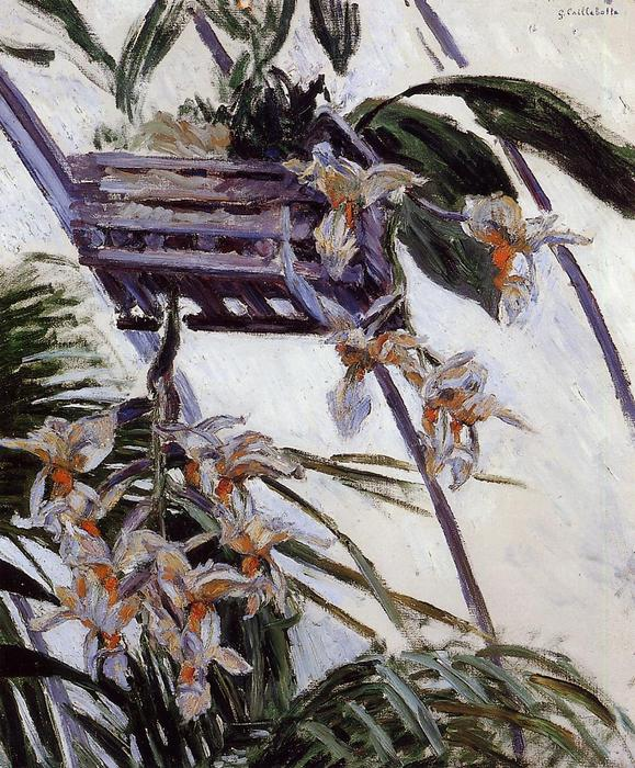 Orchids, Oil On Canvas by Gustave Caillebotte (1848-1894, France)