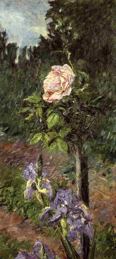 Rose with Purple Iris, Garden at Petit Gennevilliers, Oil On Canvas by Gustave Caillebotte (1848-1894, France)