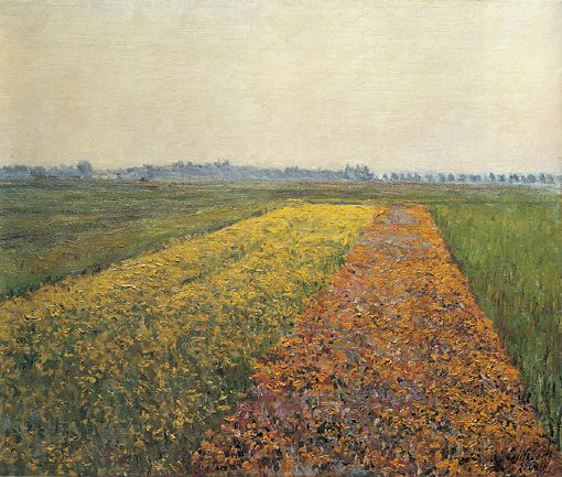 The Yellow Fields at Gennevilliers, 1884 by Gustave Caillebotte (1848-1894, France) | Oil Painting | WahooArt.com