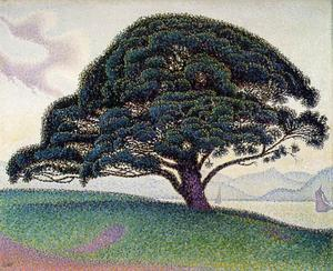 Paul Signac - Le pin de Bonaventura a Saint-Tropez (The Bonaventure Pine in Saint-Tropez)