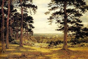 Benjamin Williams Leader - A Peep Through The Pines