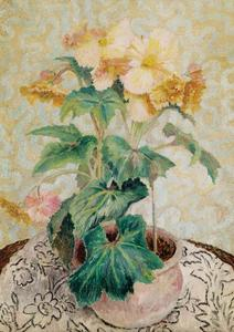 Dora De Houghton Carrington - Begonias
