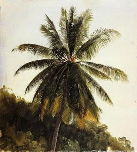 Frederic Edwin Church - Palm Trees, West Indies