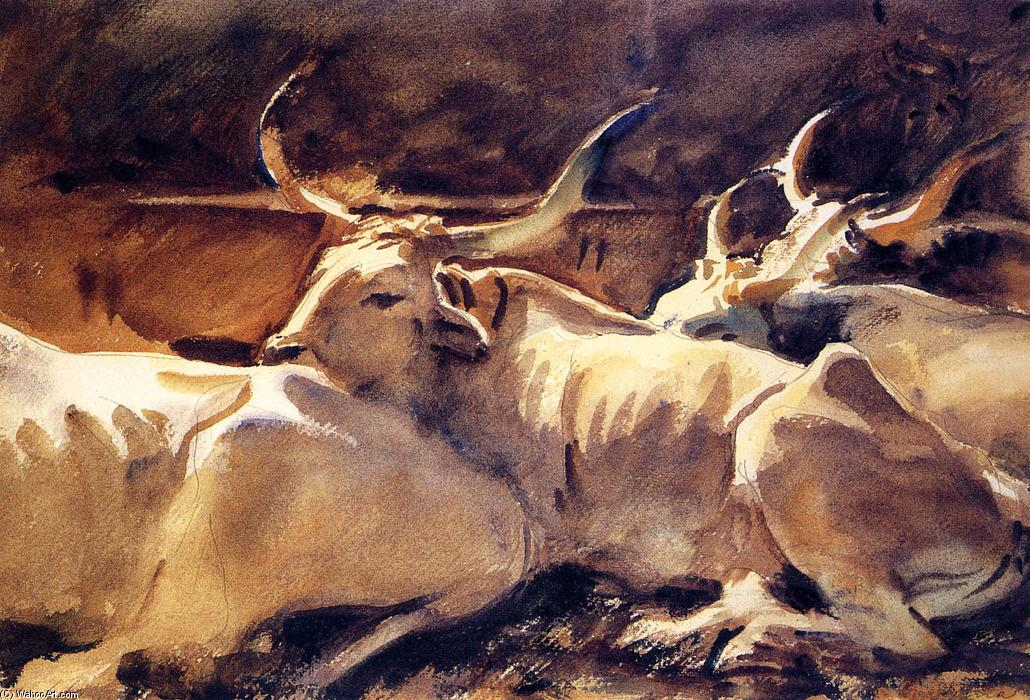 Oxen in Repose, Watercolour by John Singer Sargent (1856-1925, Italy)