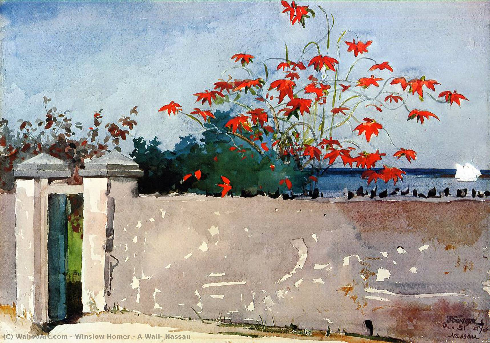 A Wall, Nassau, Watercolour by Winslow Homer (1836-1910, United States)