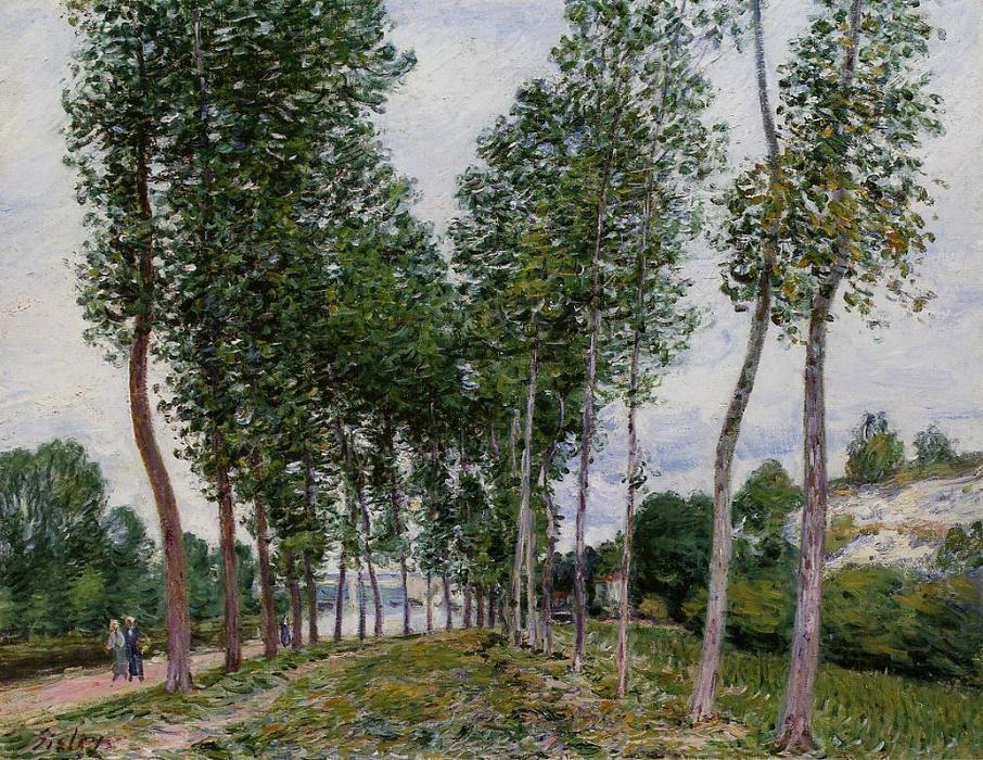 Lane of Poplars on the Banks of the Loing, Oil On Canvas by Alfred Sisley (1839-1899, France)