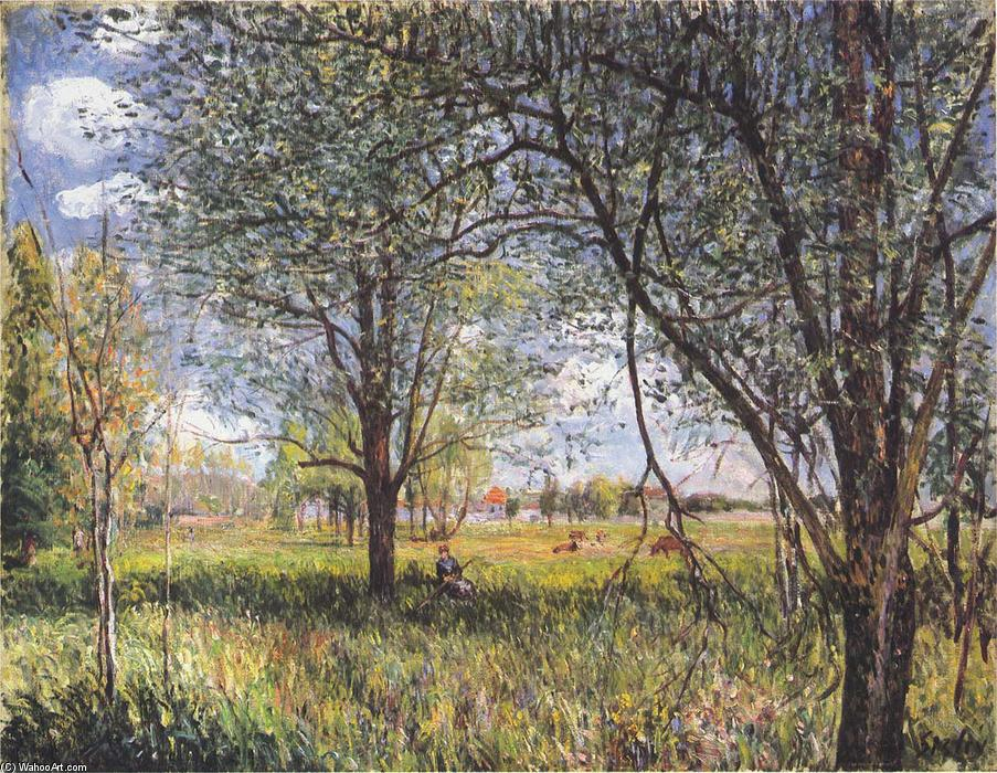 Willows in a field afternoon, Oil On Canvas by Alfred Sisley (1839-1899, France)