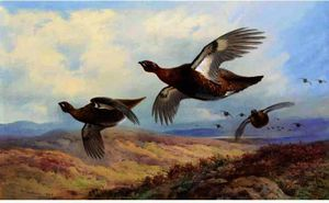 Archibald Thorburn - Red Grouse In Flight