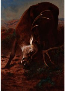 Archibald Thorburn - Red Stag Fraying