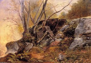 Asher Brown Durand - Study from nature, rocks and trees