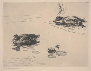 Frank Weston Benson - Untitled (Ducks)
