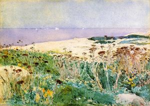 Frederick Childe Hassam - Isles of Shoals 1