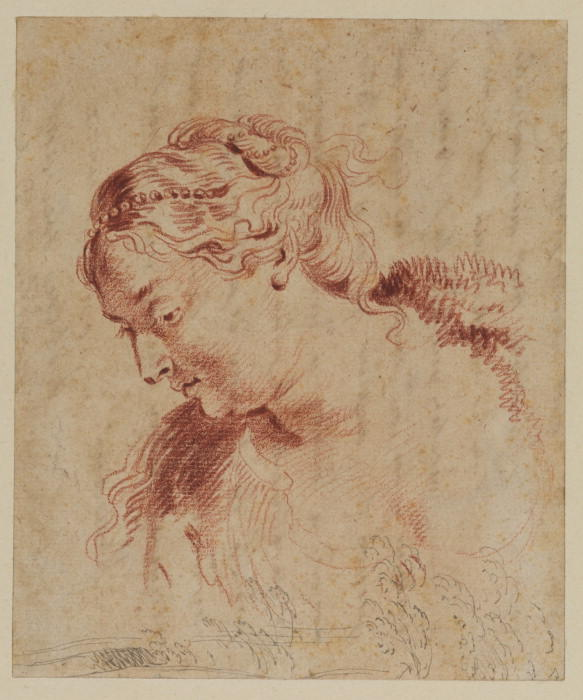 Female head and some trees, Oil by Jean Antoine Watteau (1684-1721, France)