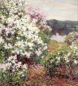 Willard Leroy Metcalf - Mountain Laurel