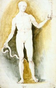 Albrecht Durer - Male Nude with a Glass and Snake, so-called Asclepius