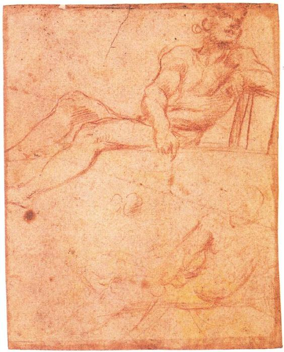 Two studies for a seated male figure, Drawing by Antonio Allegri Da Correggio (1489-1534, Italy)