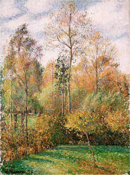 Autumn, Poplars, Oil On Canvas by Camille Pissarro (1830-1903, Virgin Islands)