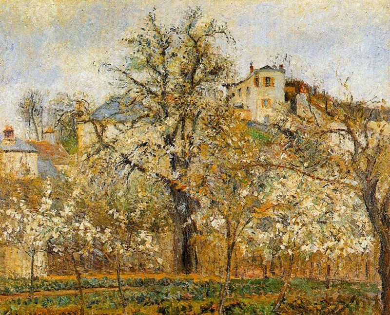 Kitchen Garden witih Trees in Flower, Spring, Pontoise, Oil On Canvas by Camille Pissarro (1830-1903, United States)
