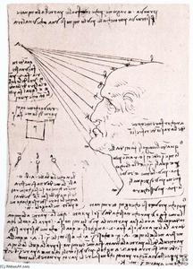 Leonardo Da Vinci - Study of the effect of light on a profile head (facsimile)
